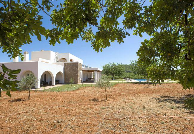 Villa en Santa Gertrudis - VILLA SANTUARI