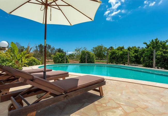 Villa in Ibiza - VILLA MUSSET