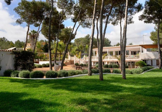 Villa in Santa Eulalia del Río - LAS FLORES 10 PAX