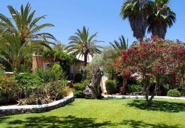 Villa in Santa Eulalia des Riu - BOUGANVILLA, CASA
